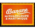 bananegm_logo2